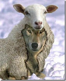 wolf_sheep_infiltrator