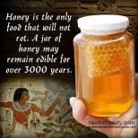 honing blijft gezond1